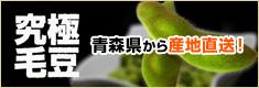 青森に伝わる究極の枝豆「毛豆(けまめ)」直販サイト。